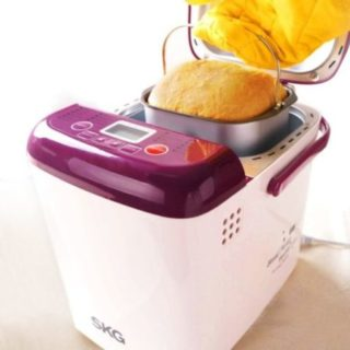SKG 1 Pound Loaf Mini Bread Maker
